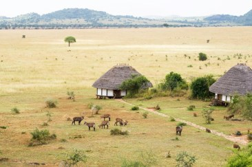 00-lede-best-lodges-in-uganda